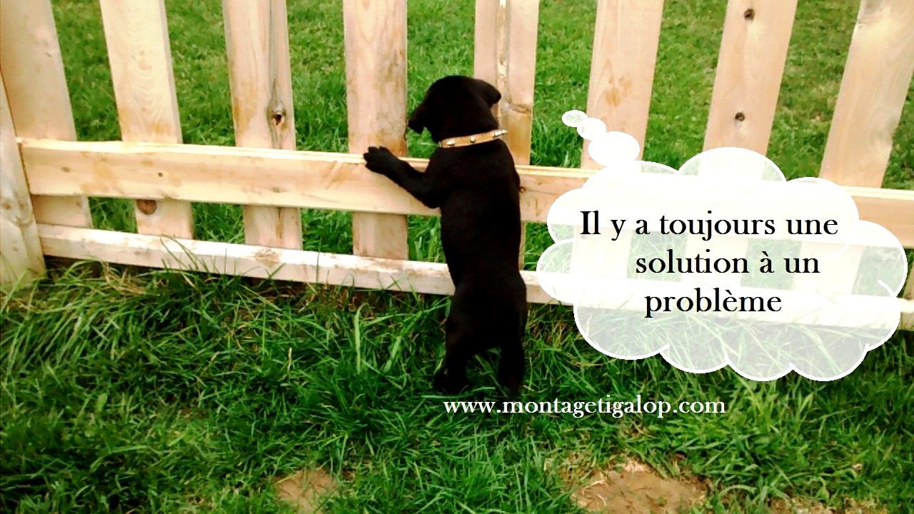 il y a toujours une solution a un problème