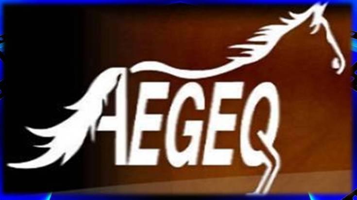 Aegeq com
