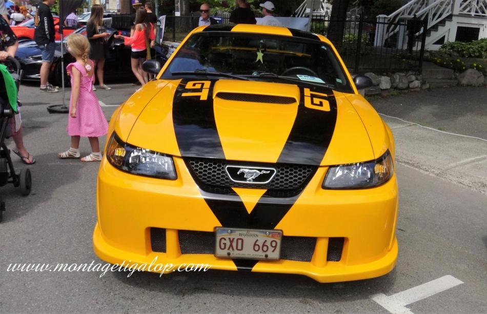 L'Auto Expo RDL