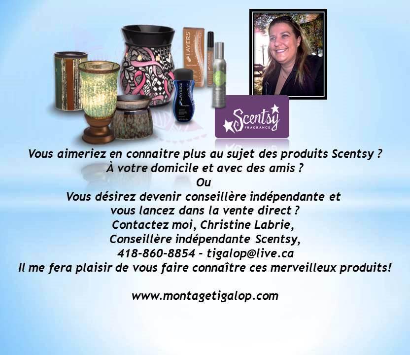conseillère indépendante Scentsy, Scentsy frangance, vente directe, bas-st-laurent, rivière-du-loup, st-antonin